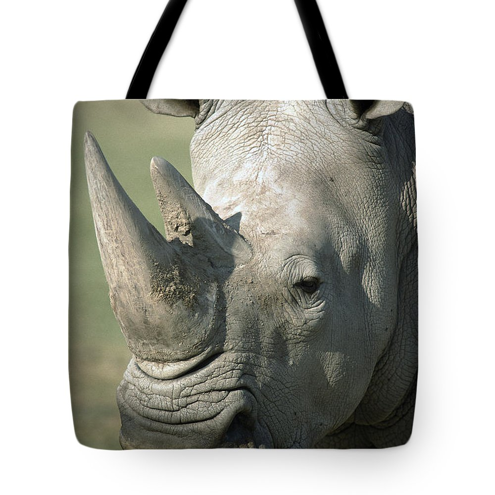 Feb0514 Tote Bag featuring the photograph White Rhinoceros Portrait by San Diego Zoo
