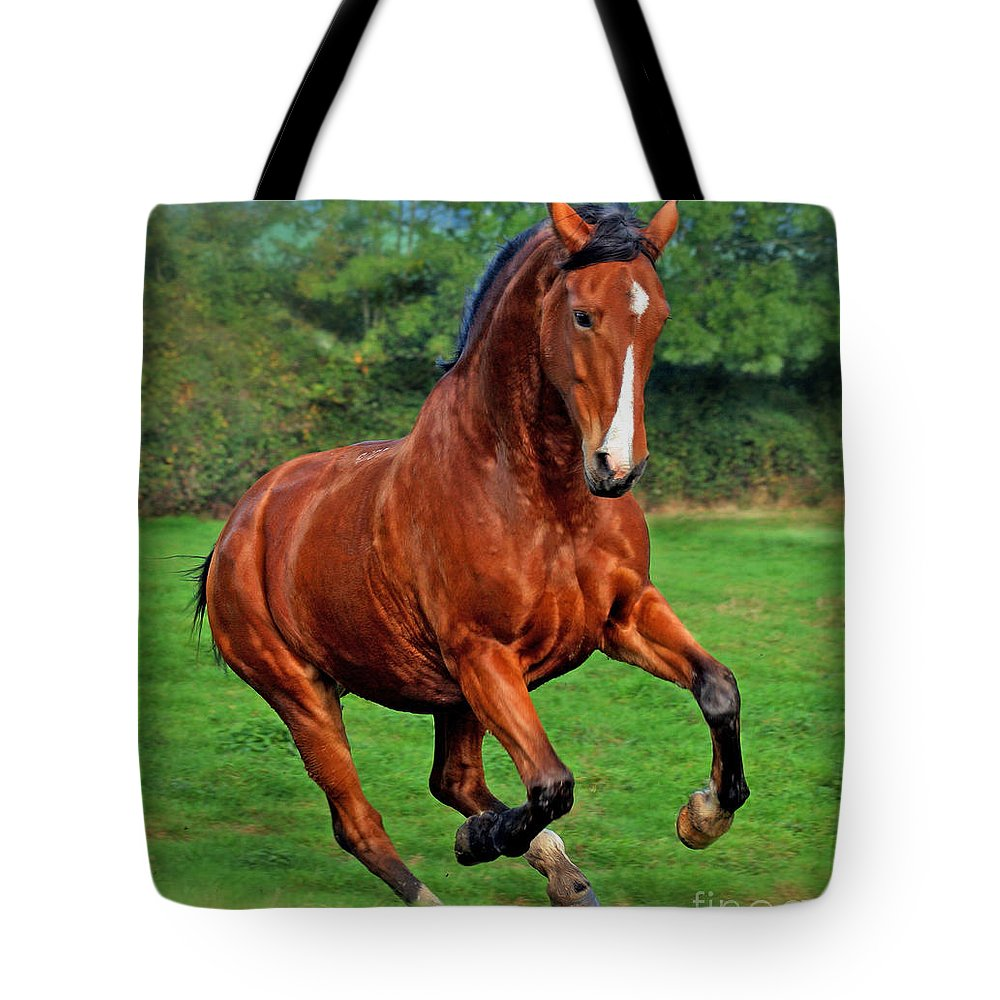 Horse Tote Bag featuring the photograph Wild At Heart by Angel Ciesniarska
