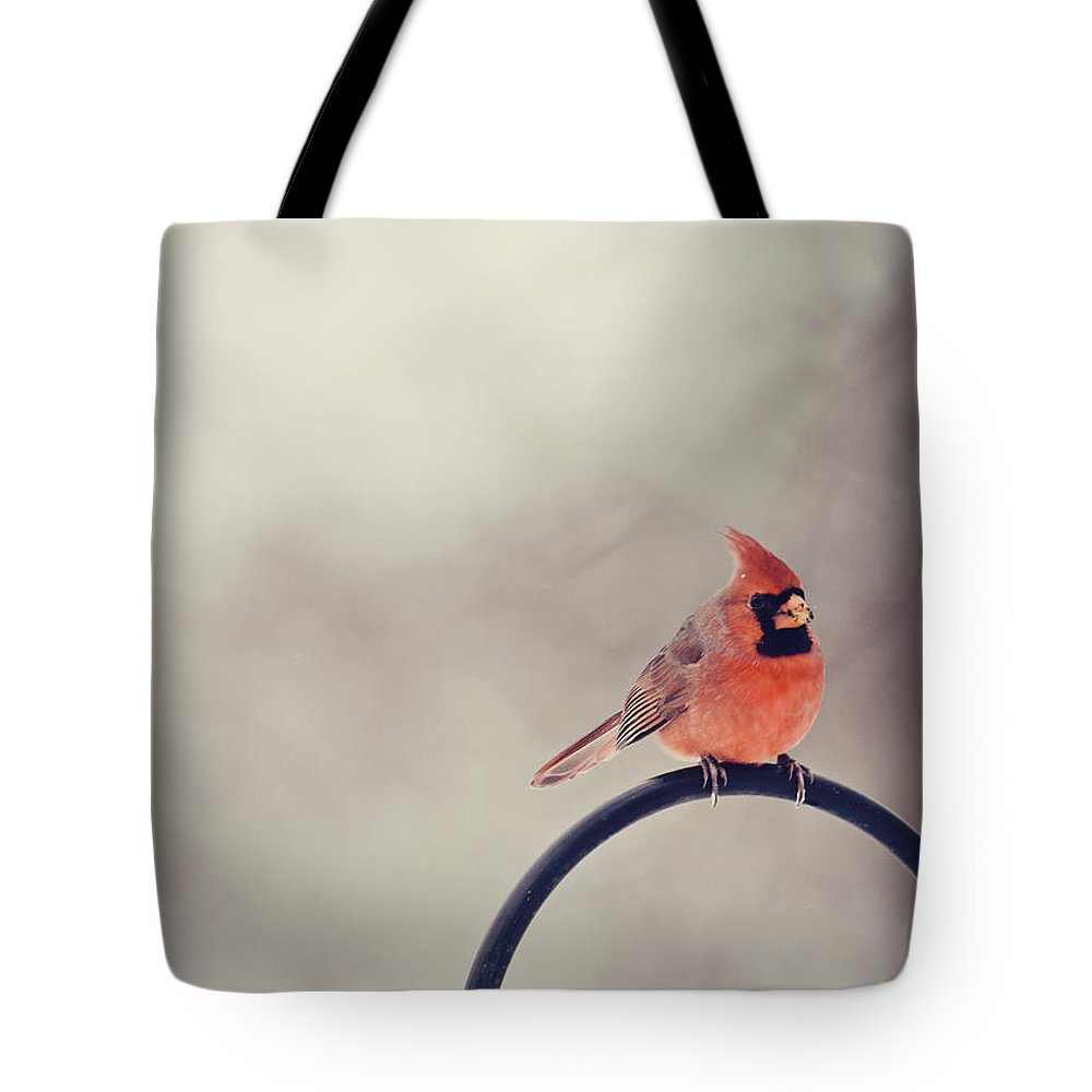 Cardinal Tote Bag featuring the photograph Winter Cardinal by Heather Applegate
