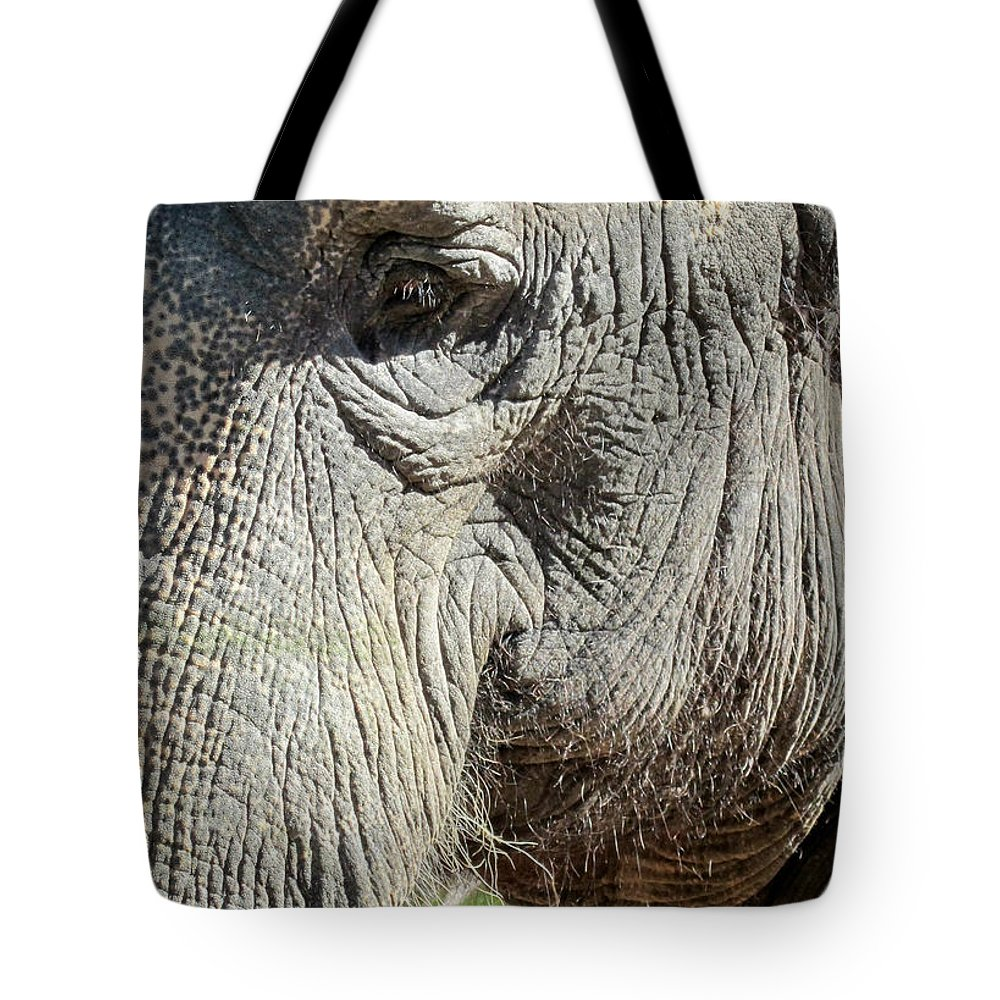 Elephant Tote Bag featuring the photograph Wise One,elephant by Sandra Reeves