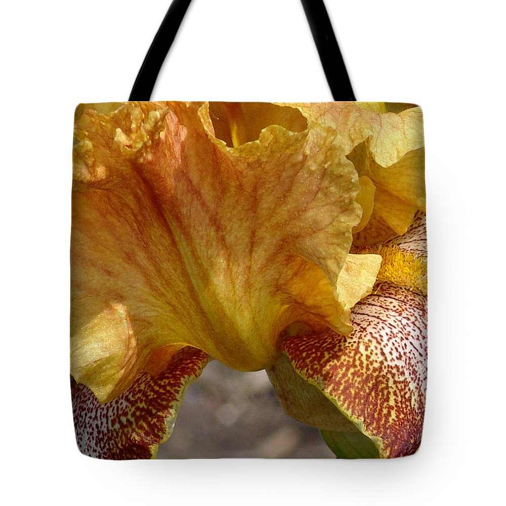 Yellow Tote Bag featuring the photograph Yellow And Maroon Iris by David Hohmann