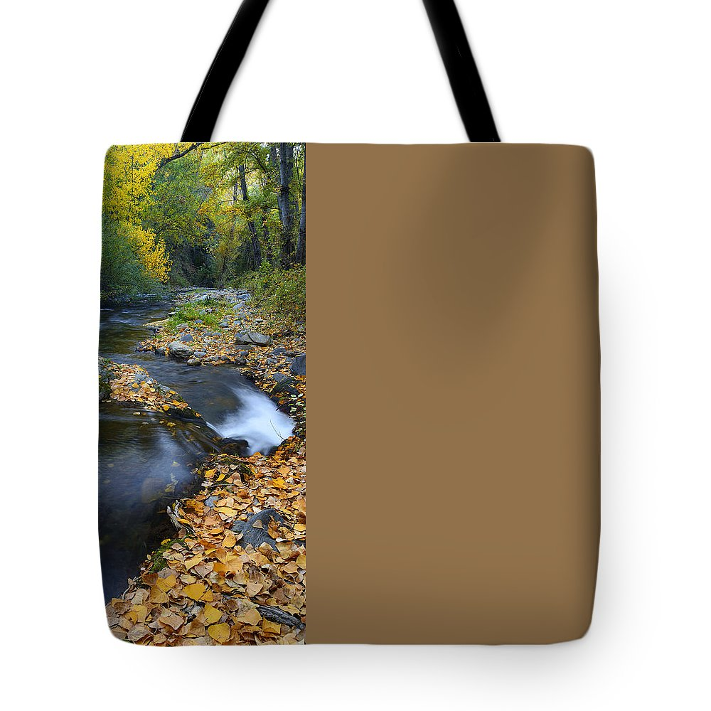 River Tote Bag featuring the photograph Yellow Autumn by Guido Montanes Castillo