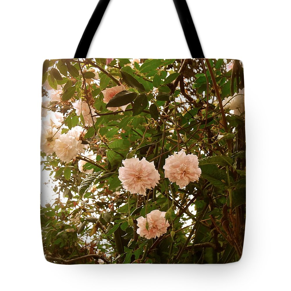 Tote Bag featuring the photograph Renewal Series by Esther Wilhelm Pridgen