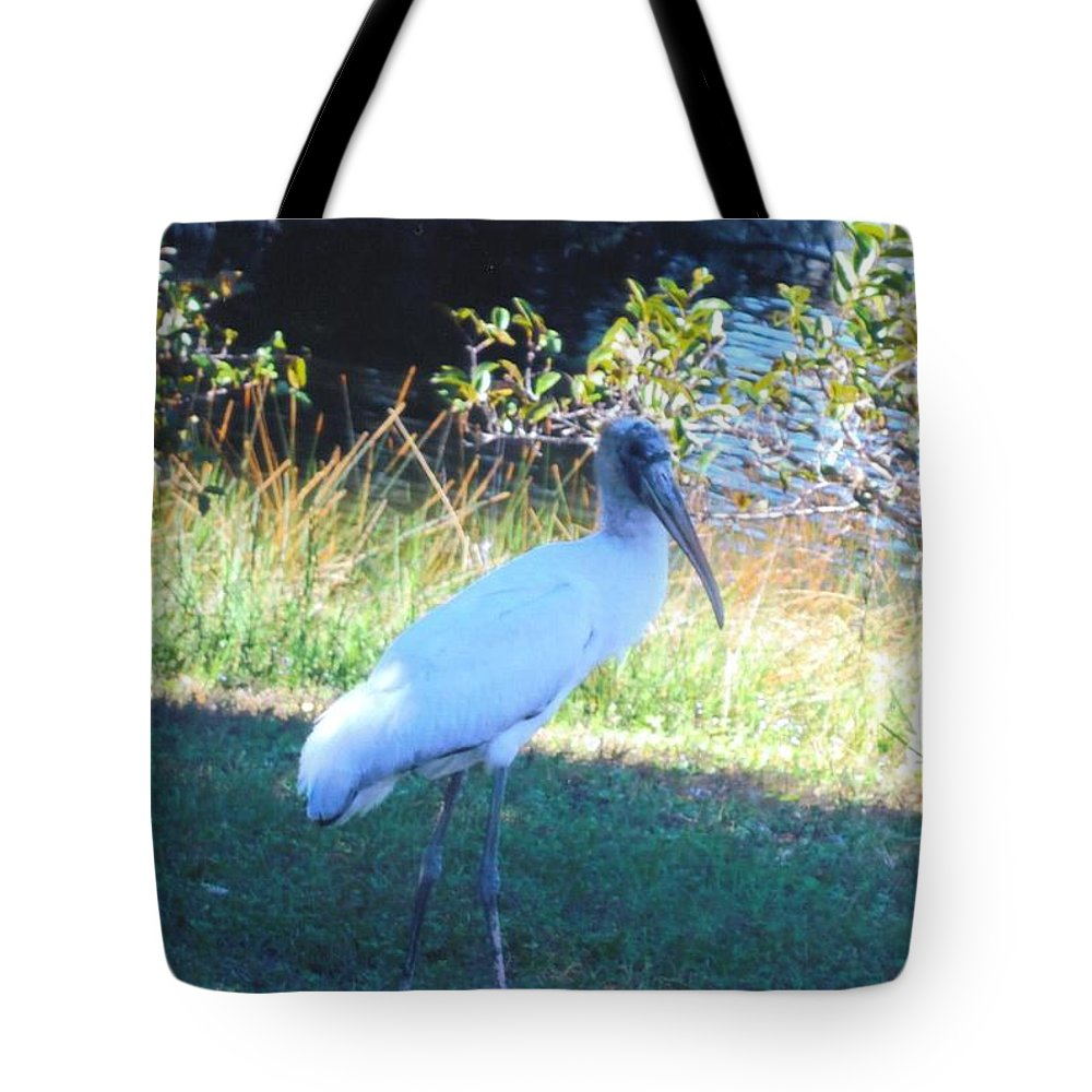 Lakes Park In Ft.myers Tote Bag featuring the photograph Wood Stork by Robert Floyd