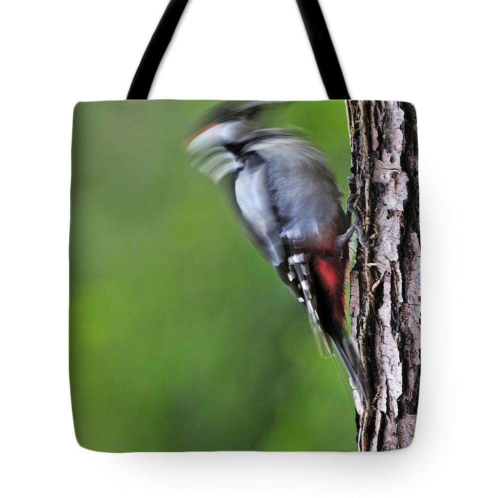 Foraging Tote Bag featuring the photograph 120520p267 by Arterra Picture Library