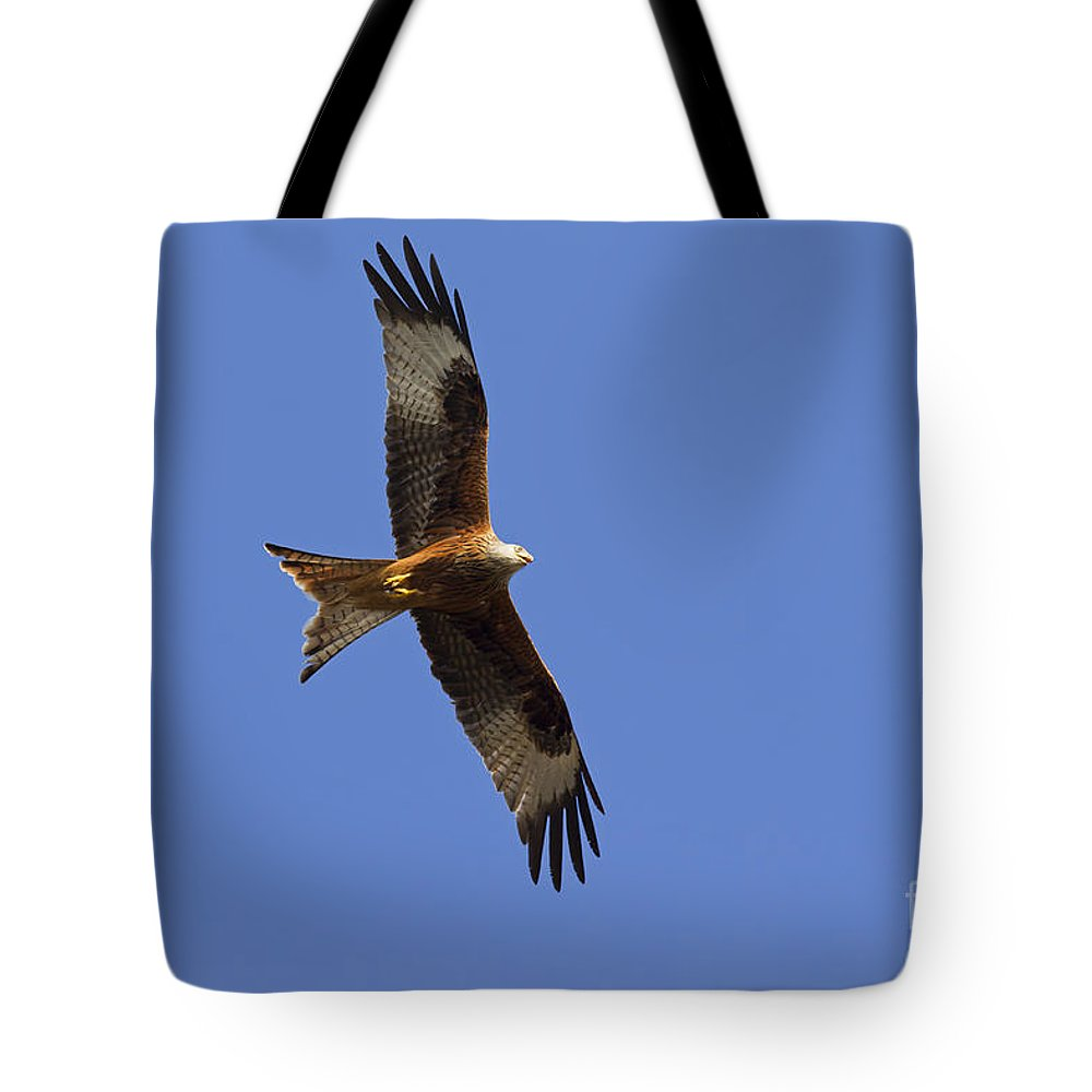 Germany Tote Bag featuring the photograph 120520p327 by Arterra Picture Library