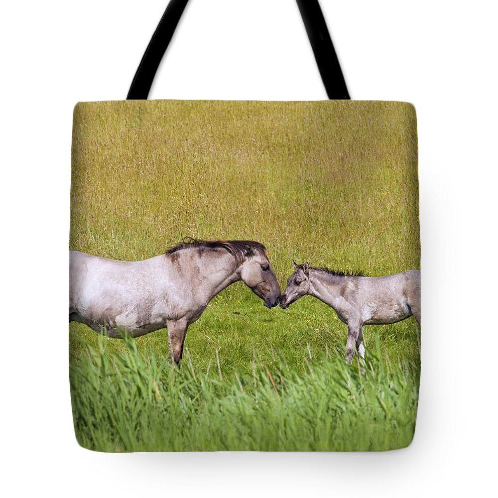 Konik Tote Bag featuring the photograph 130201p027 by Arterra Picture Library
