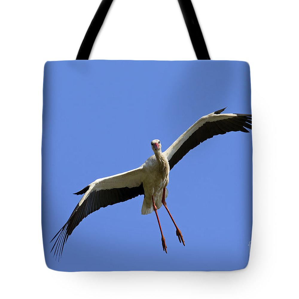 White Stork Tote Bag featuring the photograph 130201p267 by Arterra Picture Library