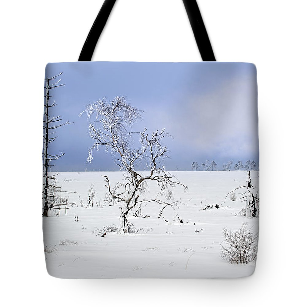 High Fens Tote Bag featuring the photograph 130201p330 by Arterra Picture Library