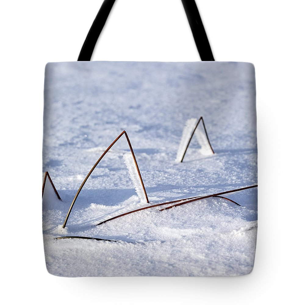 Vegetation Tote Bag featuring the photograph 130201p362 by Arterra Picture Library