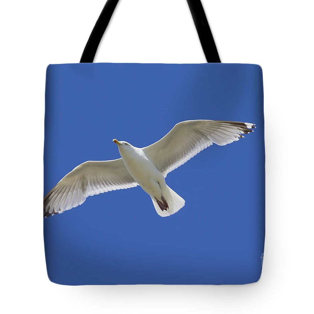 European Tote Bag featuring the photograph 130215p213 by Arterra Picture Library