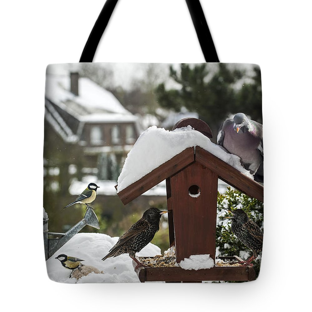 Common Starling Tote Bag featuring the photograph 130215p292 by Arterra Picture Library