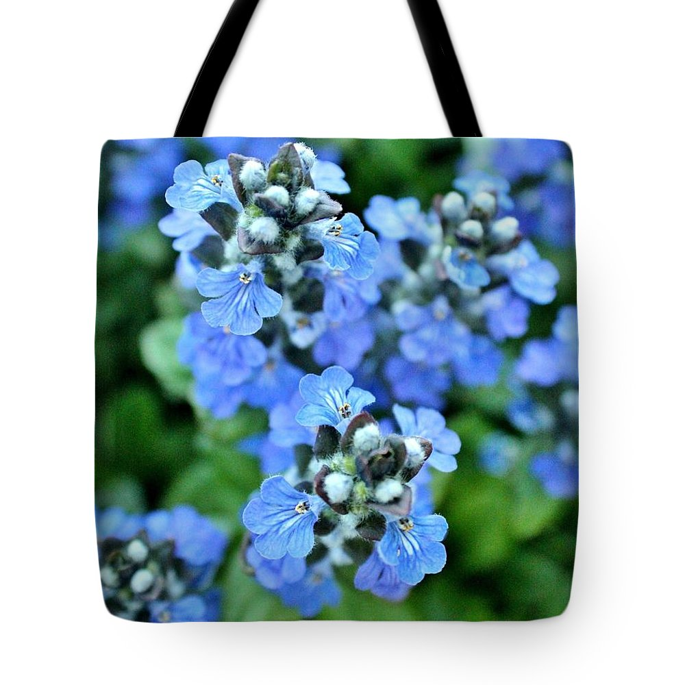 Tote Bag featuring the photograph Spring 2013 by Chet B Simpson