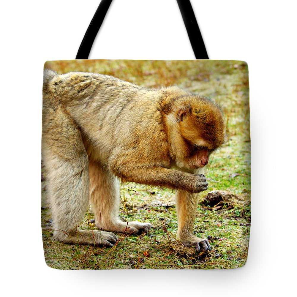 Monkey Tote Bag featuring the photograph Monkey by Heike Hultsch