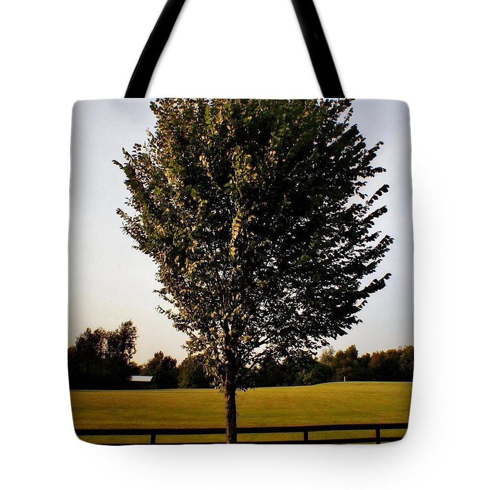 Tote Bag featuring the photograph Orange County Park by Chet B Simpson