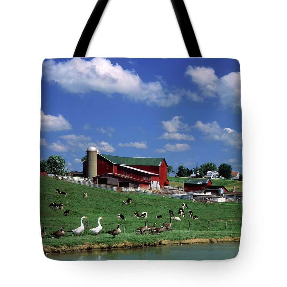 Photography Tote Bag featuring the photograph 1990s Amish Family Farm Bunker Hill by Animal Images