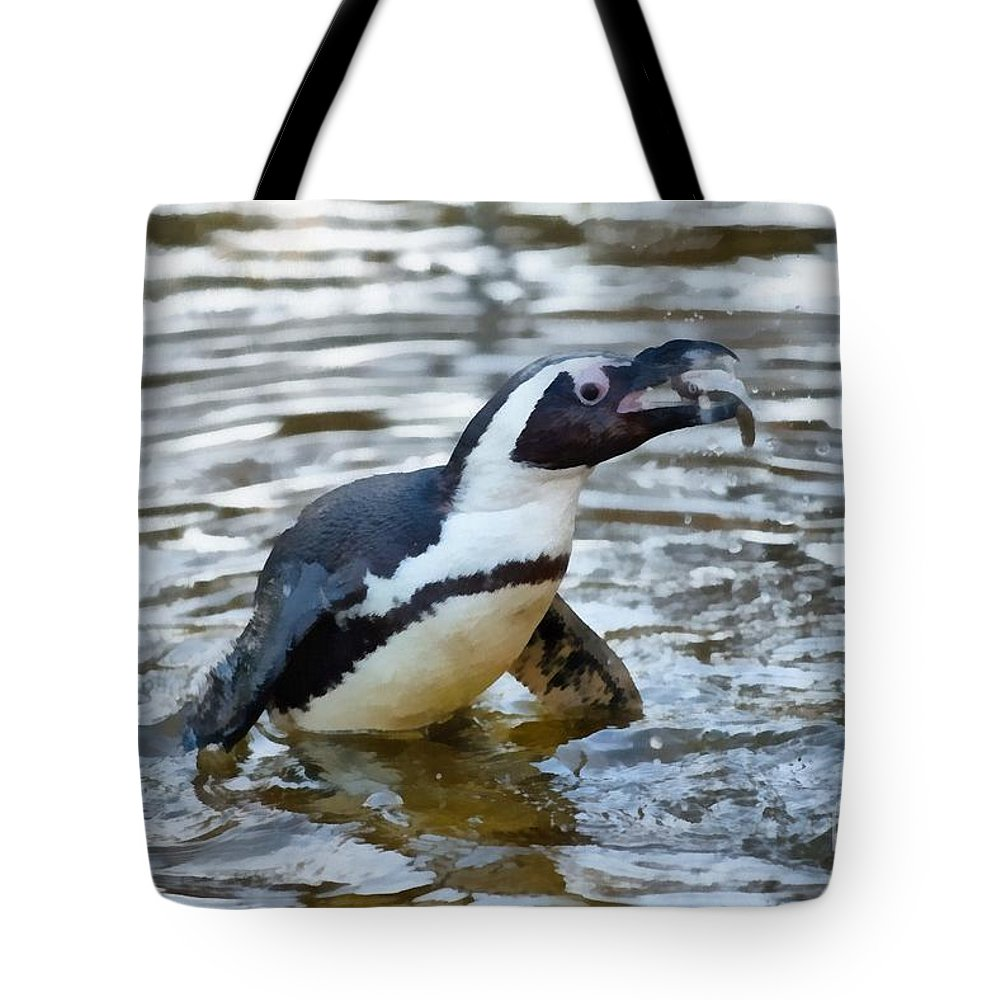 African Penguin Lifestyle Products