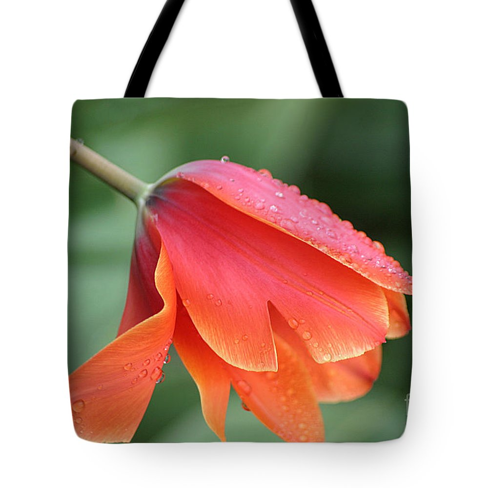 Tulips Tote Bag featuring the photograph After The Rain by Living Color Photography Lorraine Lynch