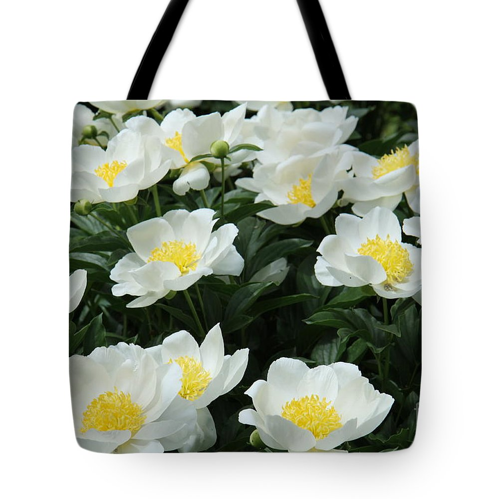 Peonies Tote Bag featuring the photograph All Together by Christiane Schulze Art And Photography