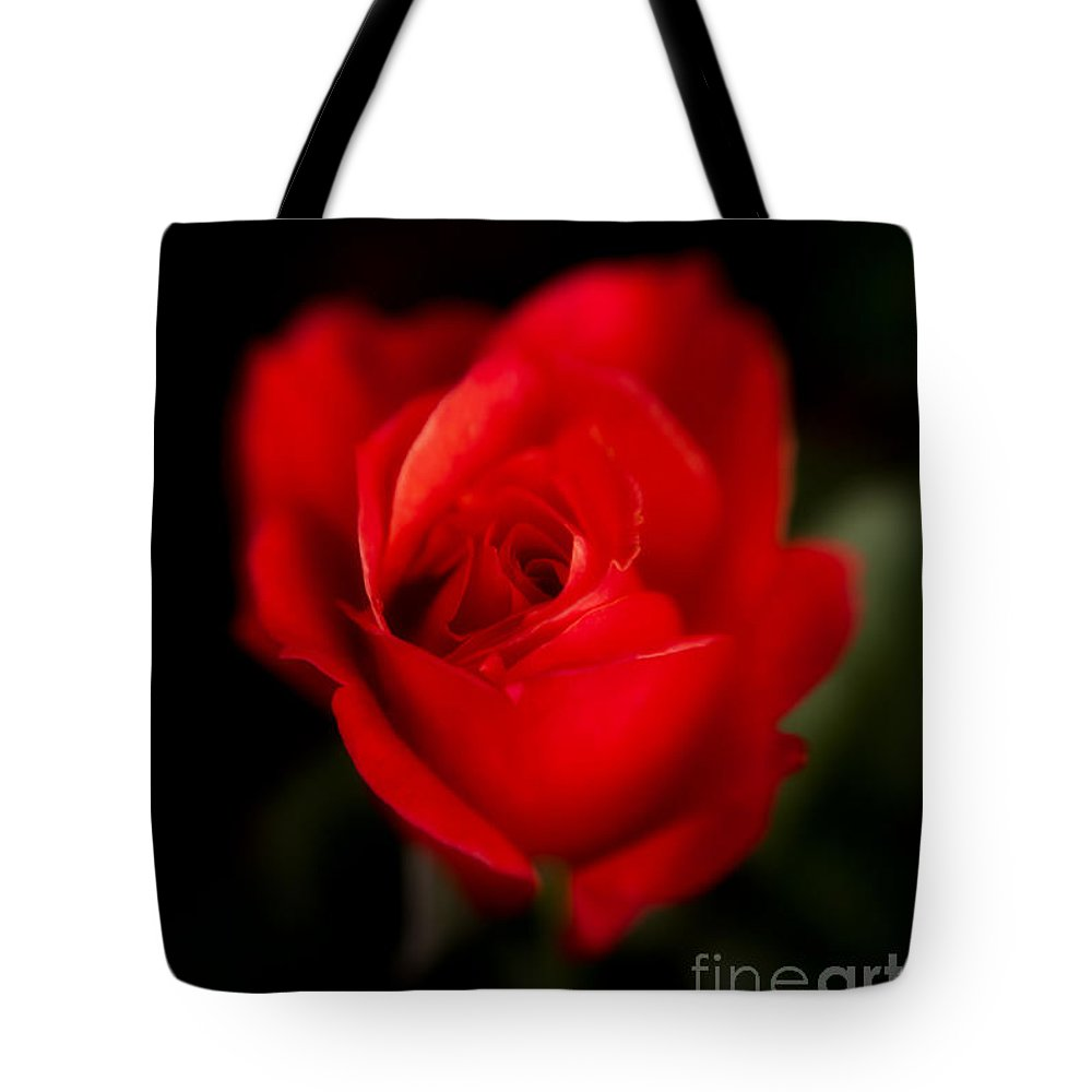 Botanical Tote Bag featuring the photograph Amore Mio by Venetta Archer