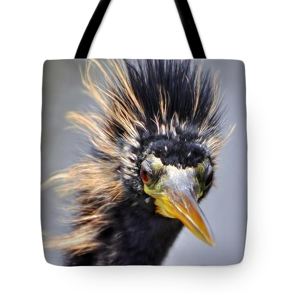 Anhinga Birds Tote Bag featuring the photograph Anhinga by Savannah Gibbs