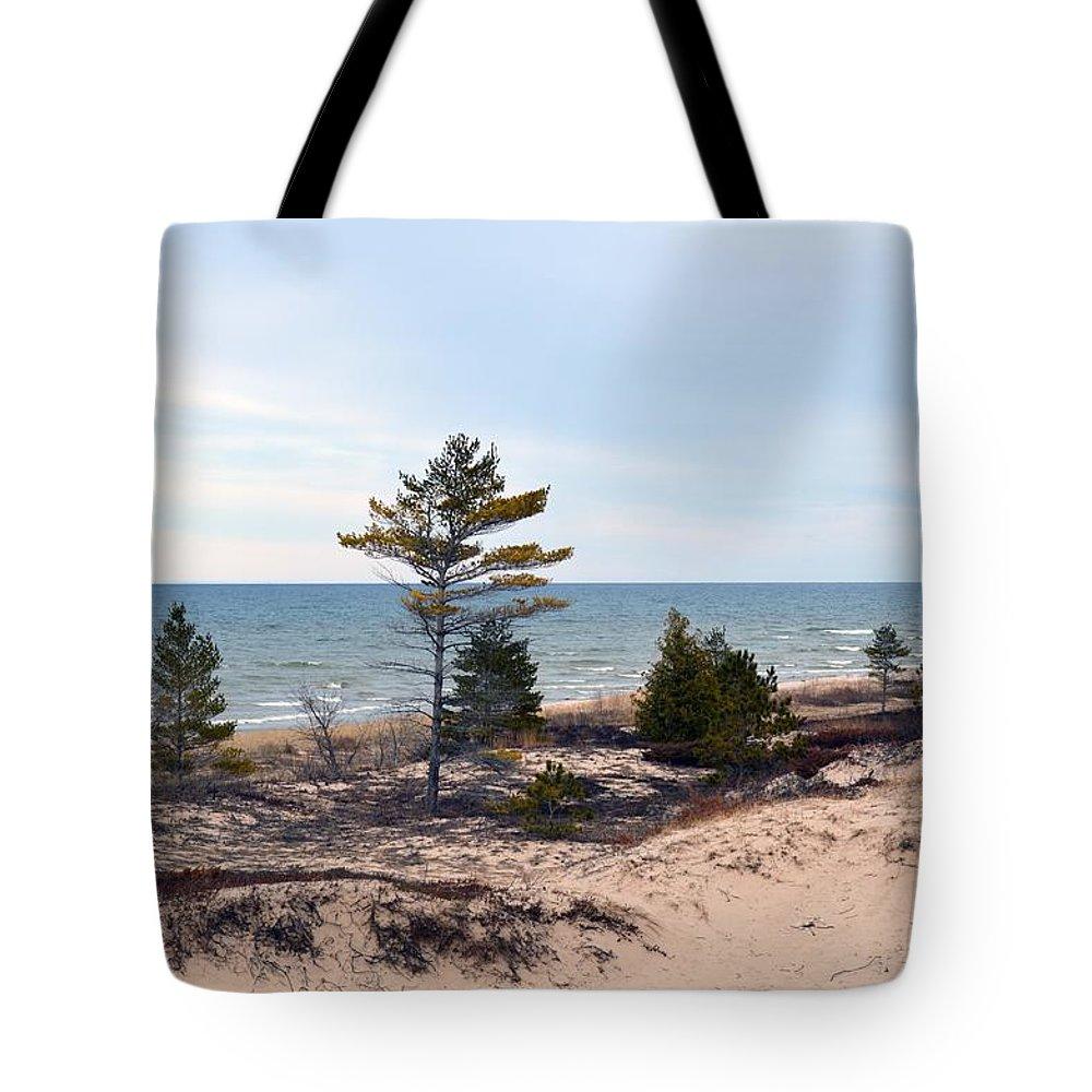 Lake Huron Tote Bag featuring the photograph At The Beach by Linda Kerkau