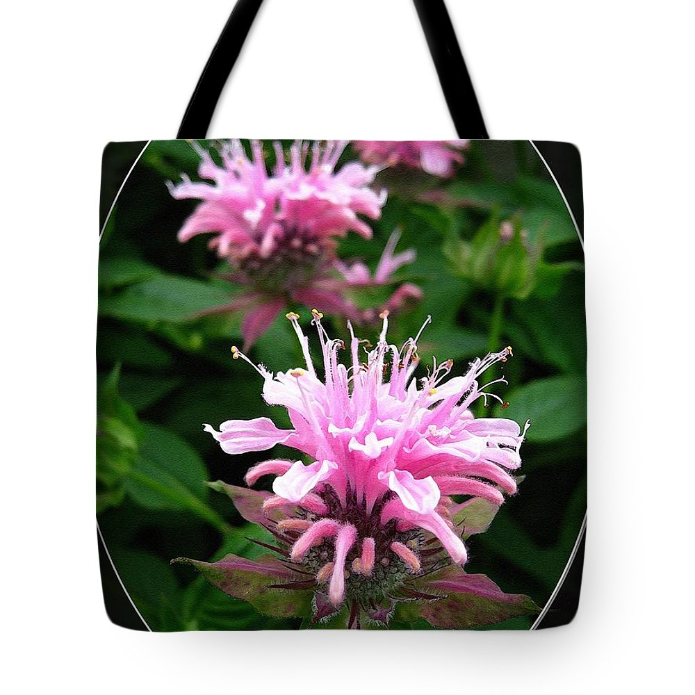 Bee Balm Tote Bag featuring the painting Bee Balm Named Panorama Pink by J McCombie