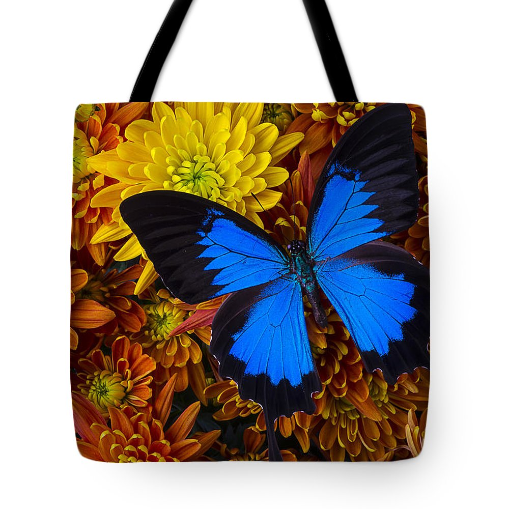 Blue Butterfly Tote Bag featuring the photograph Blue Butterfly On Mums by Garry Gay