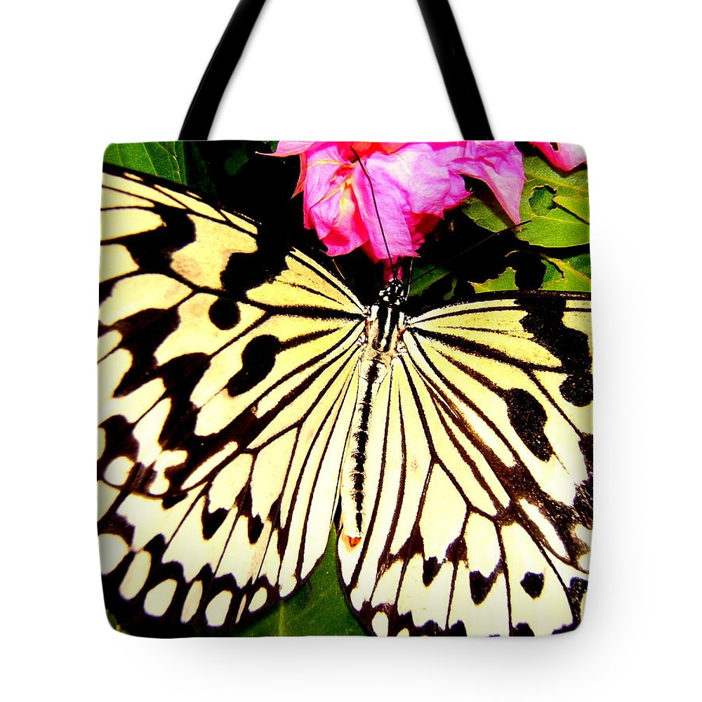 Butterfly Tote Bag featuring the photograph Butterfly by Cynthia Amaral