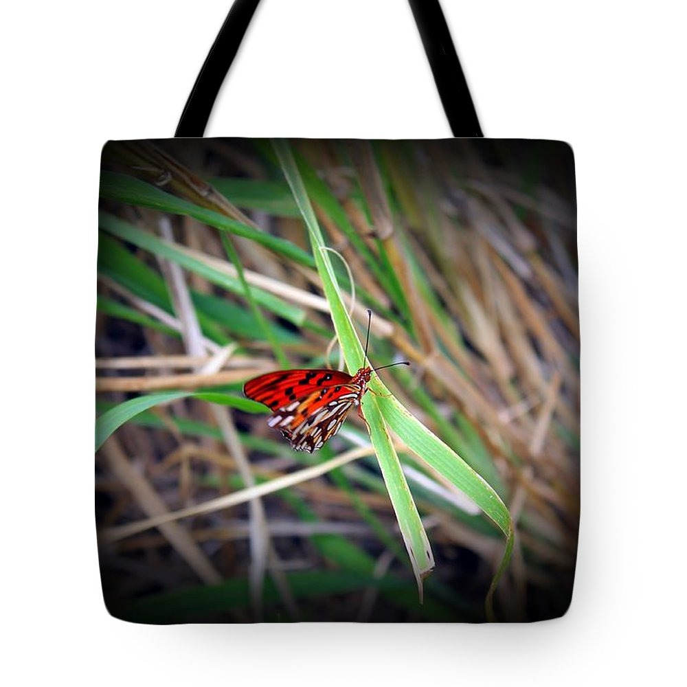 Butterfly Tote Bag featuring the photograph Butterfly by James Markey