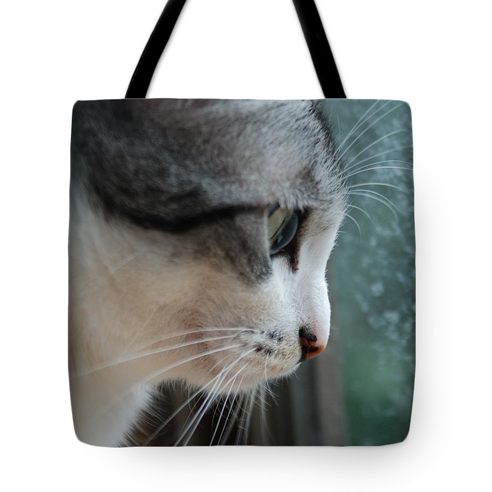 Cat Tote Bag featuring the photograph Cat by FL collection