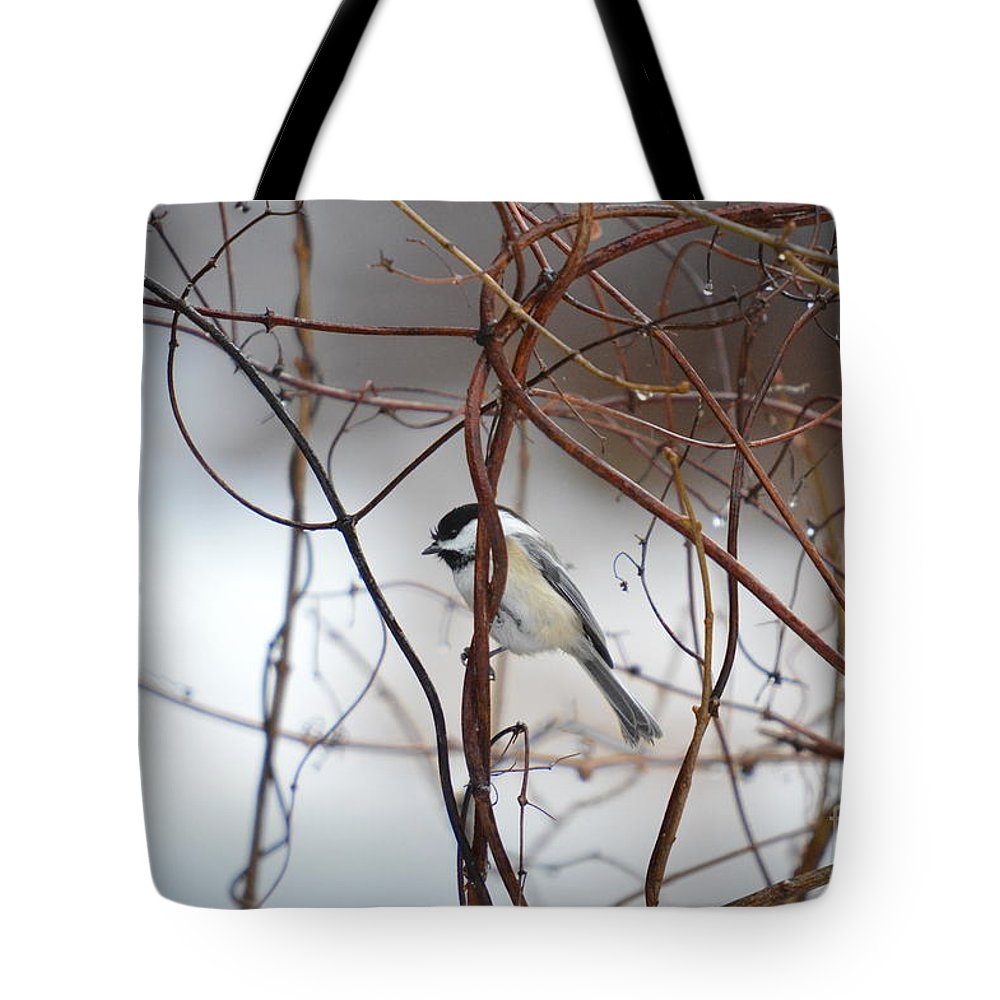 Chickadee Tote Bag featuring the photograph Chickadee On Woodvine by Thomas Phillips