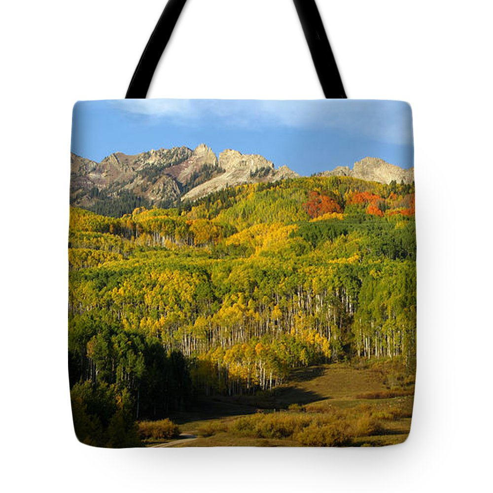 Mountains Tote Bag featuring the photograph Colorado's Fall Spectrum by Carol Milisen
