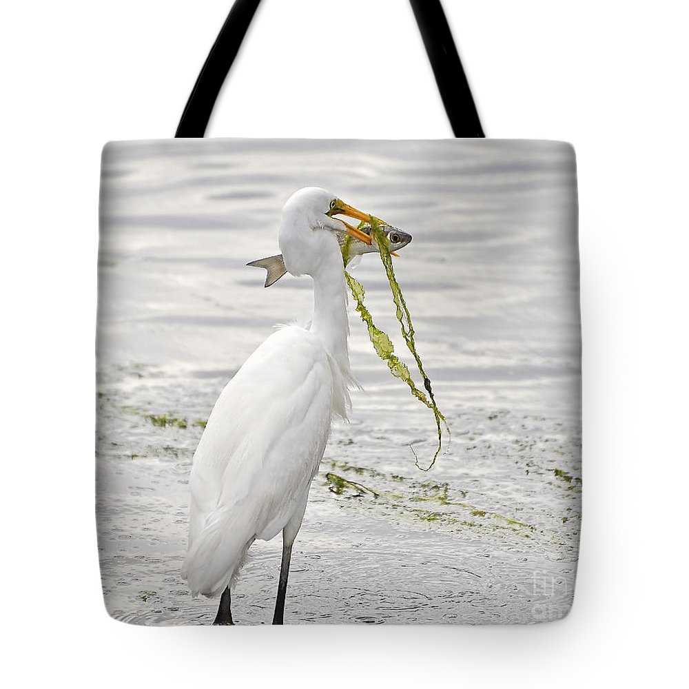 Egret Tote Bag featuring the photograph Colossal Catch by Al Powell Photography USA