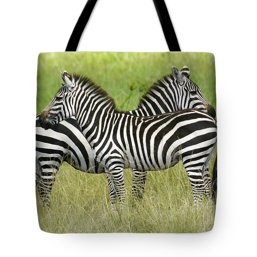 Africa Tote Bag featuring the photograph Crisscross Stripes by Michele Burgess
