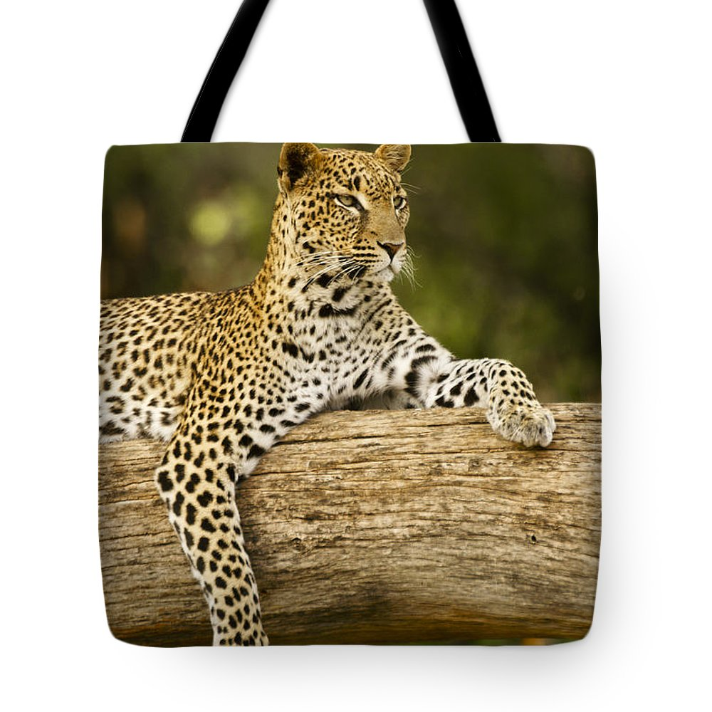 Africa Tote Bag featuring the photograph Dignity by Michele Burgess