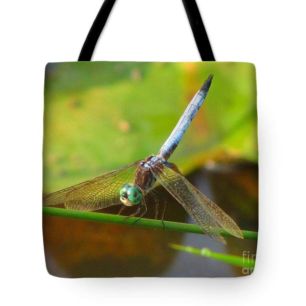 Dragonfly Tote Bag featuring the photograph Dragonfly by Rrrose Pix