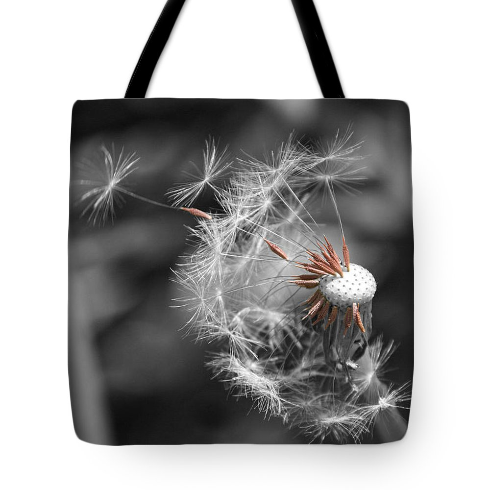 Flower Tote Bag featuring the photograph Drift by Dylan Punke