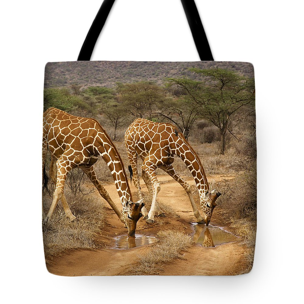 Africa Tote Bag featuring the photograph Drinking In Tandem by Michele Burgess