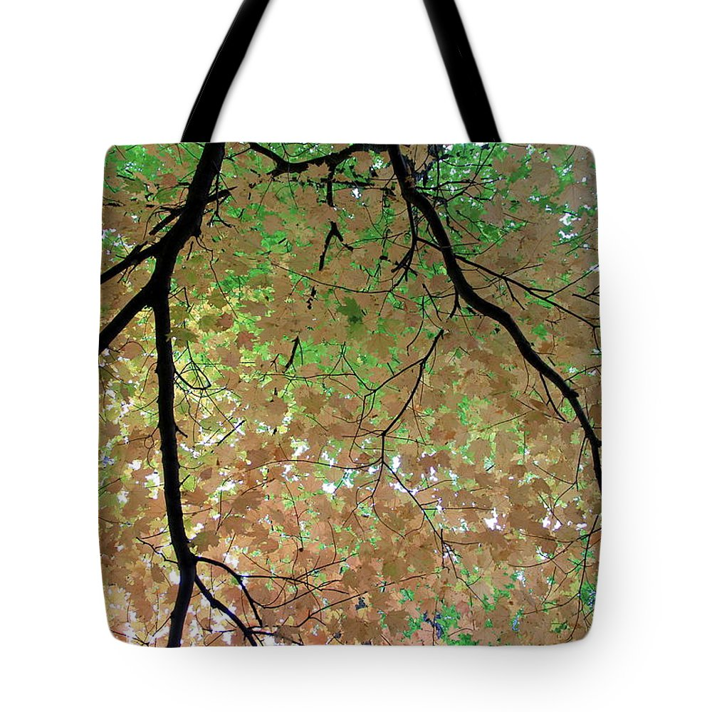Fall Tote Bag featuring the photograph Fall Tree by Valentino Visentini