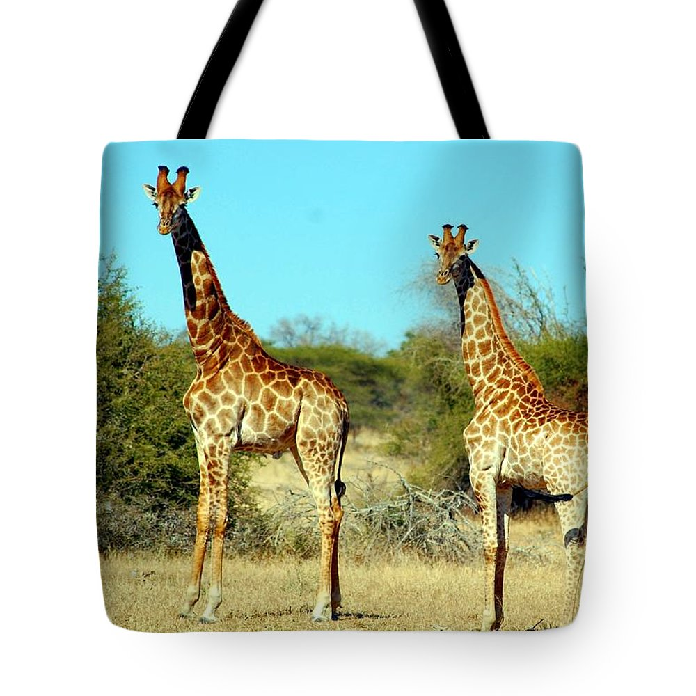Mammal Tote Bag featuring the photograph Giraffes by FL collection