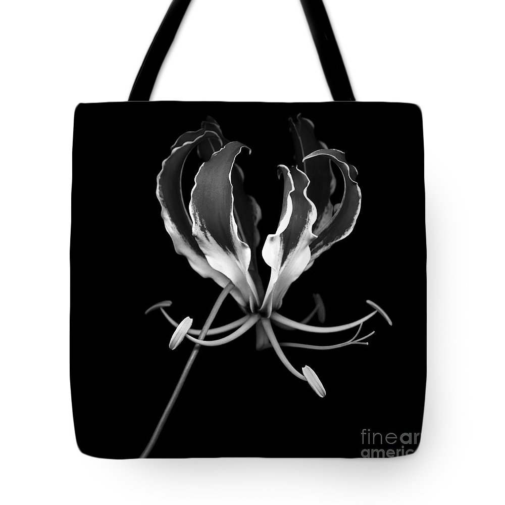 Gloriosa Superba Tote Bag featuring the photograph Glory Lily by Oscar Gutierrez