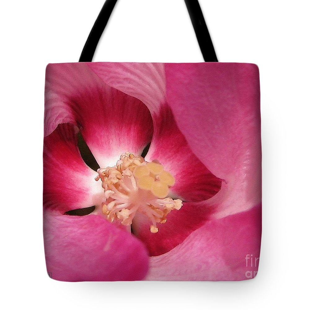 Hibiscus Moscheutos Tote Bag featuring the painting Hibiscus Moscheutos Named Luna Pink Swirl by J McCombie