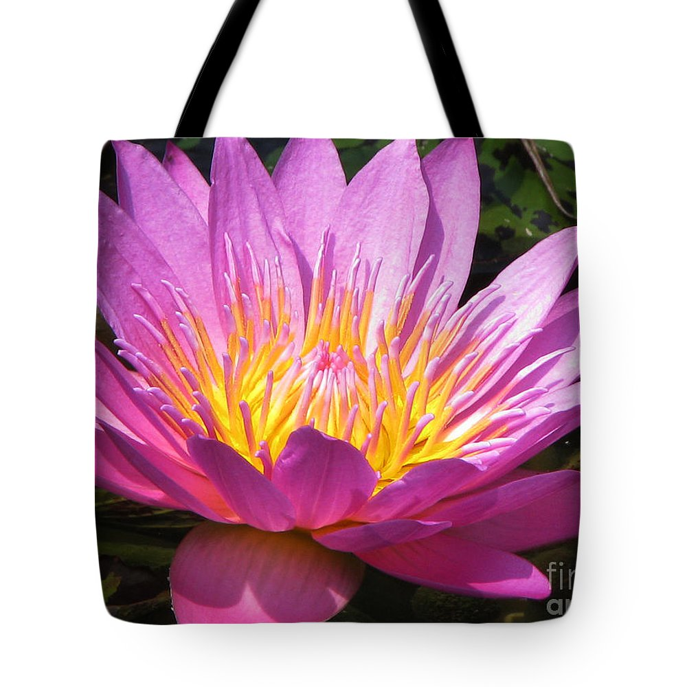 Lilly Tote Bag featuring the photograph It by Amanda Barcon