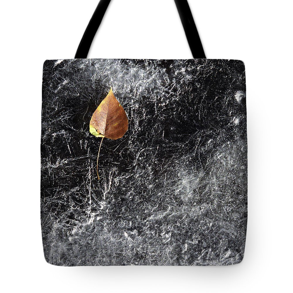 Ice Tote Bag featuring the photograph Leaf On Ice by J L Woody Wooden