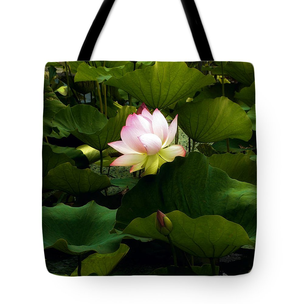 Lotus Tote Bag featuring the photograph Lotus by Jessica Jenney