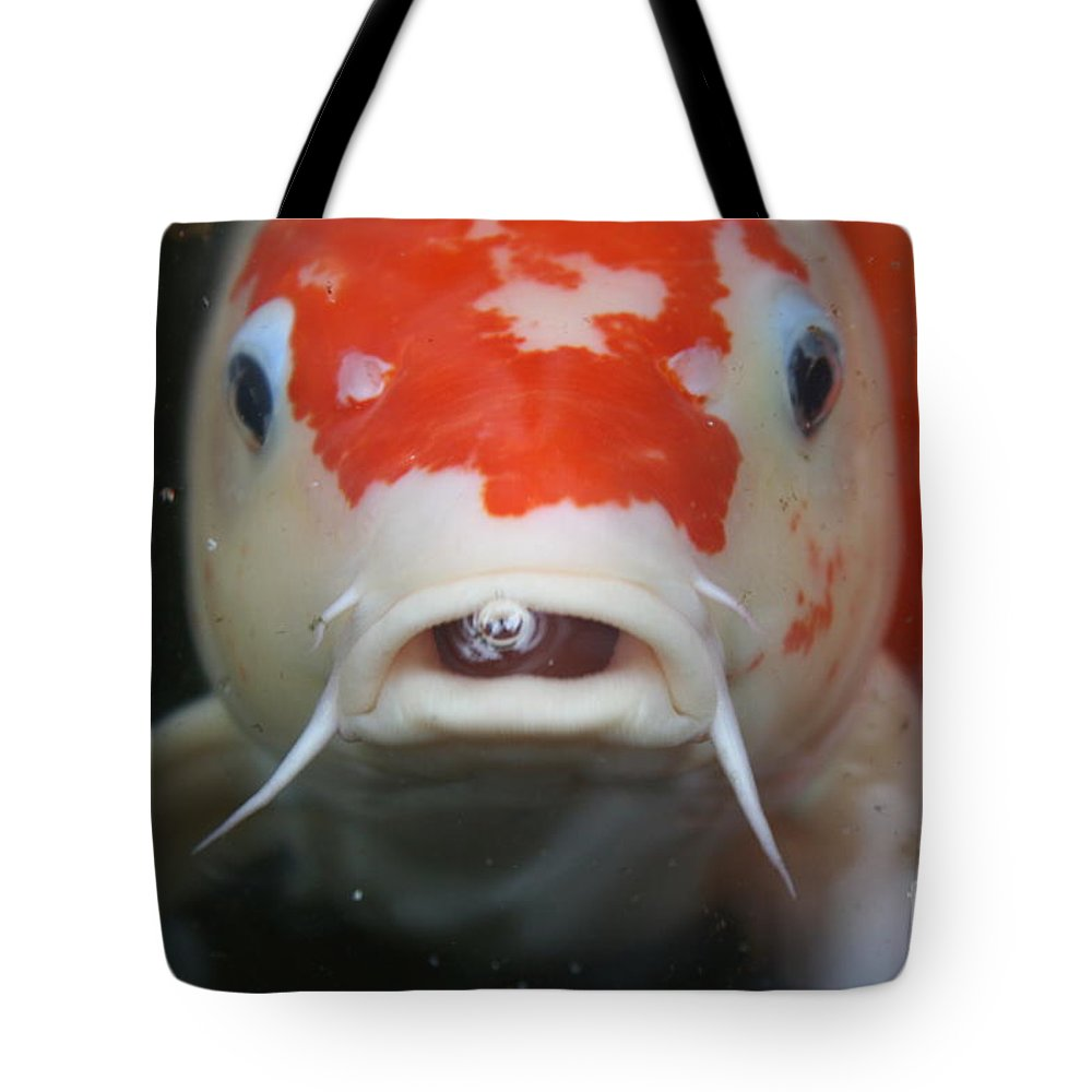 Koi Tote Bag featuring the photograph Lucky Koi 2 by Irina Davis