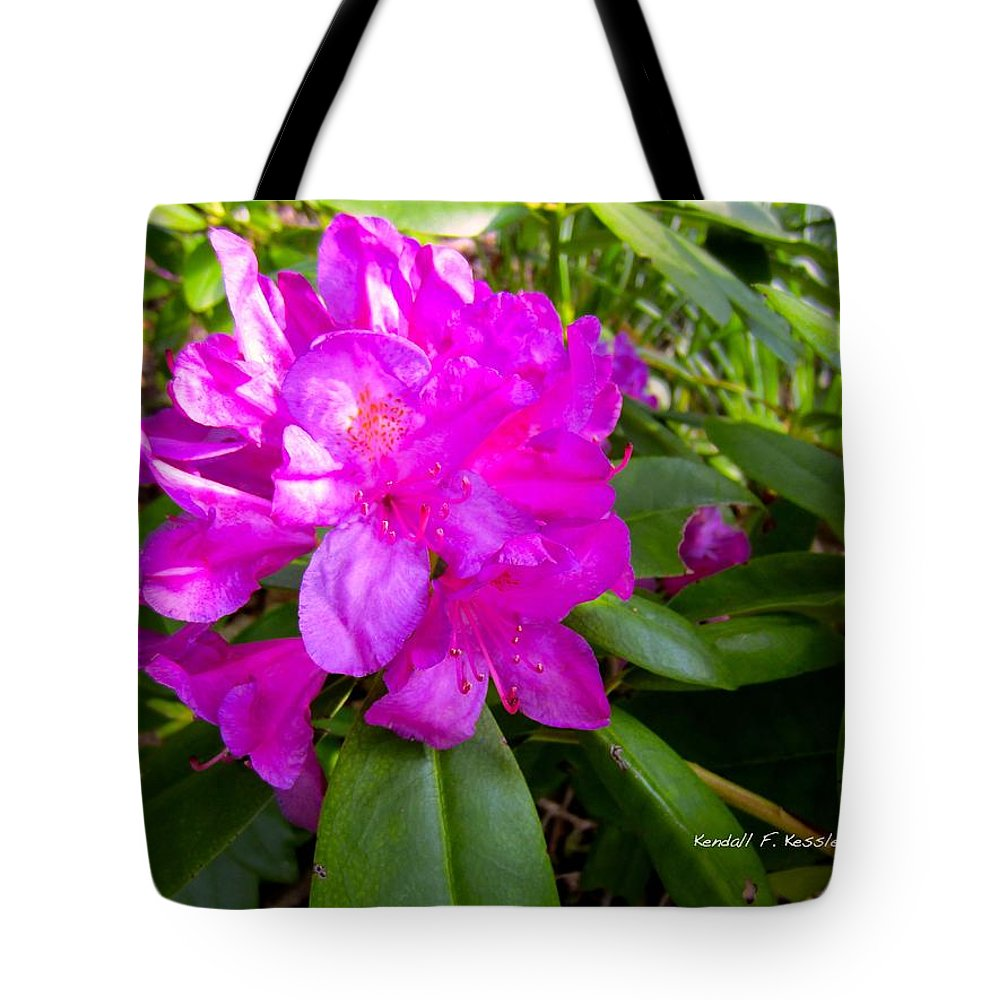 Rhododendron Tote Bag featuring the photograph Magenta Swirl by Kendall Kessler