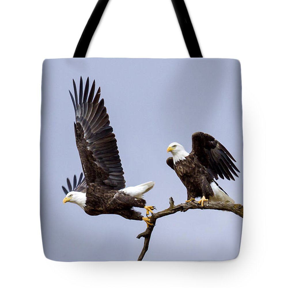 Eagle Tote Bag featuring the photograph Majestic Beauty 2 by David Lester