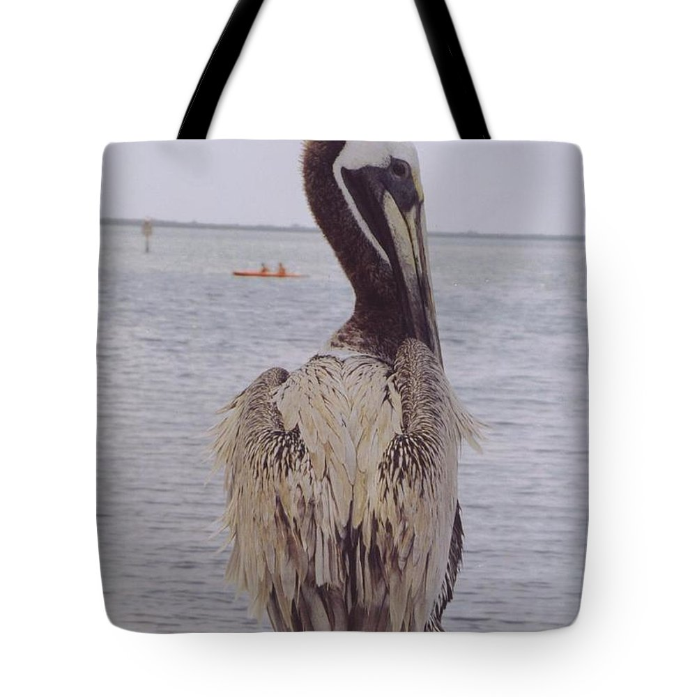 Boat Dock At Matlacha Tote Bag featuring the photograph Male Pelican by Robert Floyd